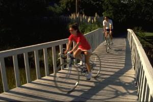 Hilton Head Activities